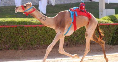 حمدان بن محمد يشرف المرموم في يوم لقايا أصحاب السمو الشيوخ