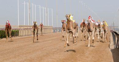 انطلاق النسخة الرابعة لمهرجان سمو ولي عهد دبي 2021